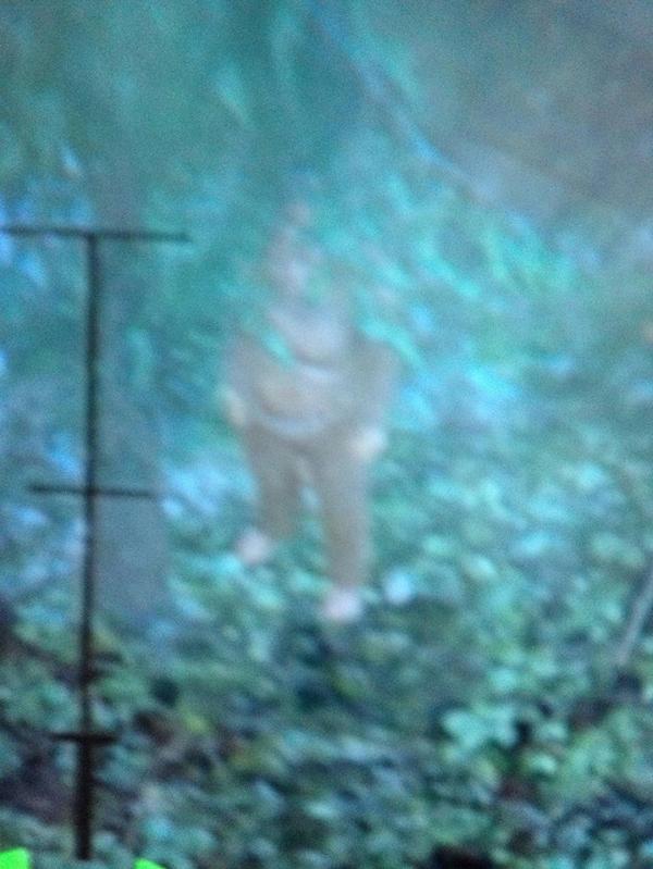 gta-v-bigfoot-sasquatch