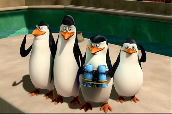 os-pinguins-de-madagascar
