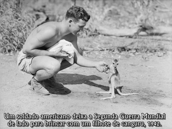 historical-photos-pt5-american-soldier-kangaroo